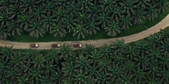 Unlocking the Rural Potential in Indonesia