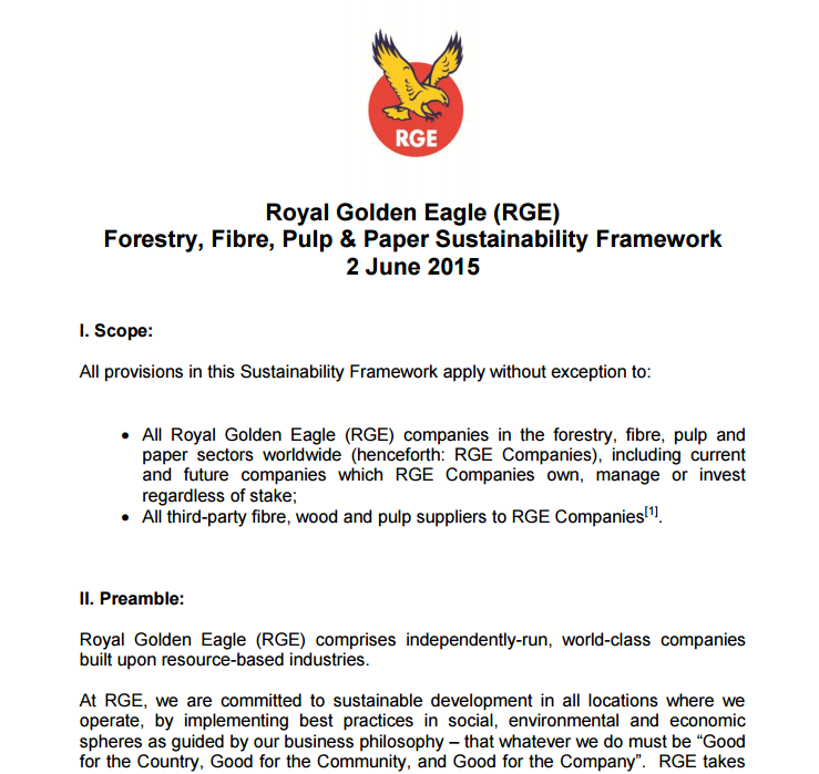 RGE Sustainability Framework