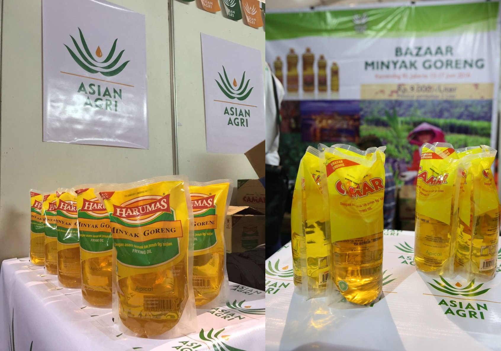 Apical's Cooking Oil Brands - Camar and Harumas