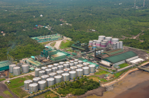 Apical's refinery in Dumai