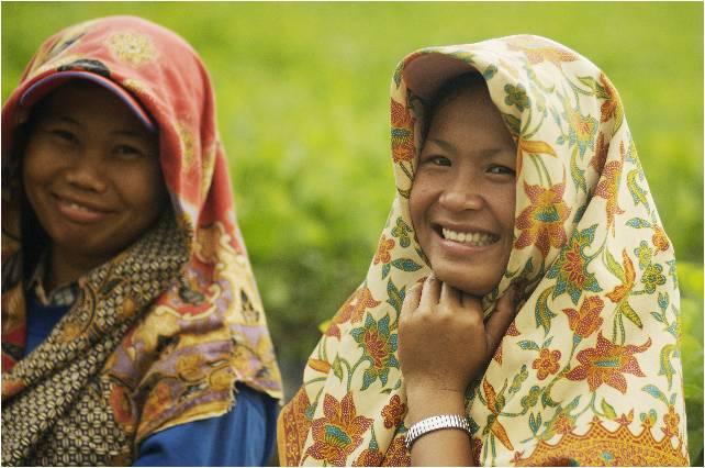 Asian Agri Smallholder Farmers
