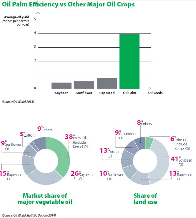 Oil Palm Efficiency vs Other Major Oil Crops