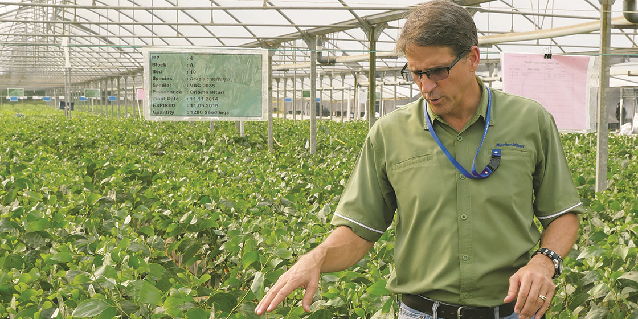The Grower: Q&A with a Nurseryman