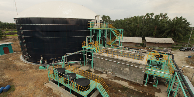 Biogas Power Plants for a Sustainable Future