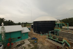 Asian Agri biogas power plant in Buatan, Riau.