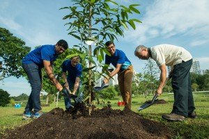 Tree planting at Bishan-Ang Mo Kio Park
