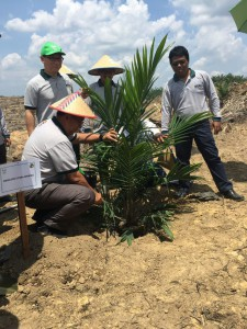 BPDPKS' Bayu Krisnamurthi, joined by Asian Agri Managing Director Kelvin Tio, inaugurates the replanting programme