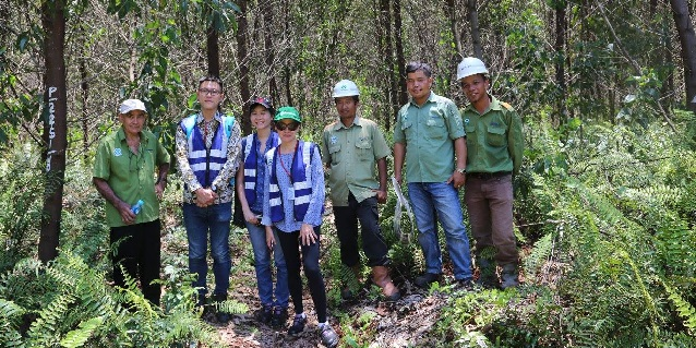On-the-ground Snapshots: SIIA visits Pangkalan Kerinci