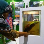 RAPP Pelalawan Expo 2016 Aquarium