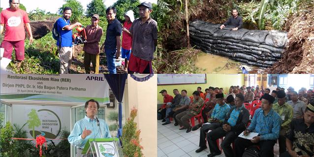 A Closer Look at the Restorasi Ekosistem Riau (RER) Project