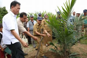 Mr. Rizal, Regional Secretariat of Batanghari District, Jambi, conducts first oil palm tree planting to mark the inauguration of Sekolah Sawit Lestari program in Indonesia