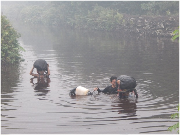 Swimming or walking neck high across rivers is part of everyday travel in the Kampar Peninsula peat swamp forest areas, especially for the camera trap team. They float their gear using plastic jerry cans, trash bags, and air-filled wet sarongs.