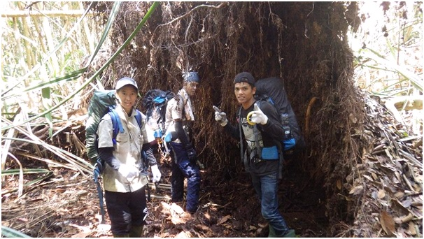 The camera trap team hiking to check the cameras.