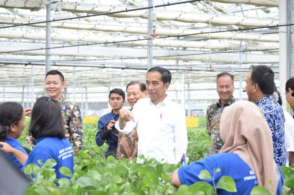 President Jokowi and Anderson Tanoto at APRIL Group PT RAPP Nursery